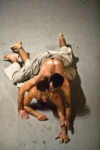 Batsheva Dance Company / Project 5 / 2011