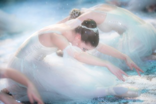 The Israel Ballet / 2010